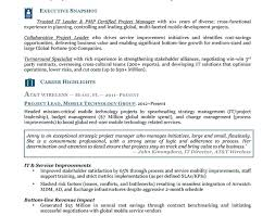 Mdm Business Analyst Resume Gorgeous How Make Resume Tags Do You