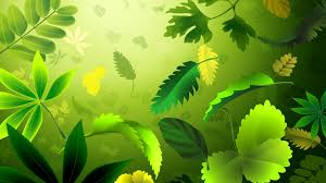 cool green wallpaper designs. Plain Green Green Leaves Wallpaper HD Design Intended Cool Wallpaper Designs