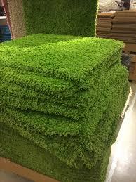 carpet grass. image of gr carpet custom grass