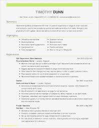 Customer Service Representative Examples Samples It Professional