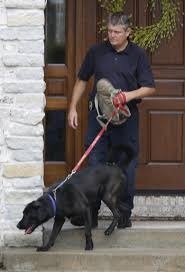 SPD buys electronics sniffing dog used in Jared Fogle child porn.