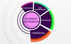Business Ownership Types Types Of Businesses And Ownership Doers Empire
