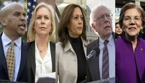 Image result for 2020 democratic hopefuls