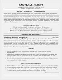 Sales Executive Resume Free Download Retail Sales Manager Resume ...