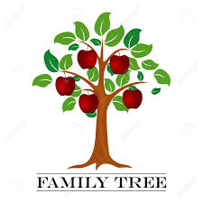 photo family tree template a vector illustration of family tree template royalty free cliparts
