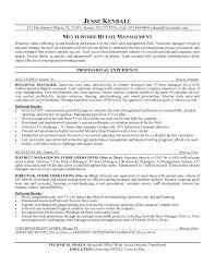 Business Development Objective Statement Business Resume Objective Examples Example Of Resumes Resume