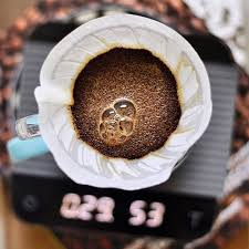 Image result for v60 bloom