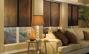 Shop Custom Energy Efficient Blinds U0026 Shades At Loweu0027s Custom Energy Efficient Window Blinds