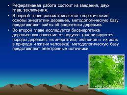 Презентация на тему Тема Энергетика деревьев РЕФЕРАТ Тема  6 Реферативная
