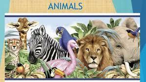 1 Primaria Unit 5 Science Animals