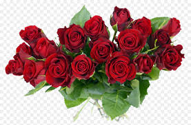 flower bouquet rose gift cut flowers