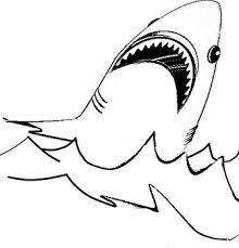 Small Picture Shark Coloring Pages The Keys Pinterest Shark Shark craft