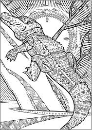 wele to dover publications creative haven untamed designs coloring book
