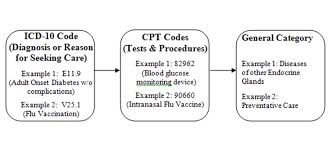 Whats The Difference Between Cpt And Icd Codes
