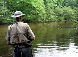 Pere Marquette River Hatch Chart Hatches And Trout Flies For The Little Manistee River In