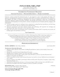 Sample Resume For Information Technology Sales Inspirationa Examples