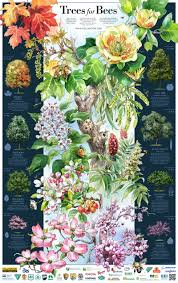 trees for beys poster with key
