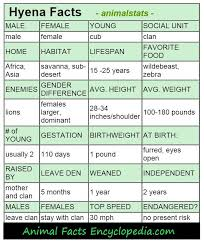 Animal Speed Chart Hyena Facts Animal Facts Encyclopedia