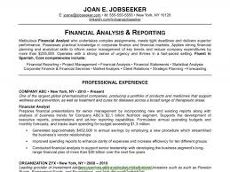 Typical Executive Resume Title Examples Best Resume Title Examples