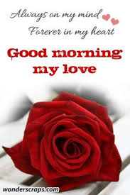 Good Morning My Love Quotes Magnificent Goodmorninglovequotes48jpg 48×448 I Love You Pinterest