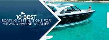 Marine Charts Are Primarily Used By Boaters For Which Purpose 10 Best Boating Destinations For Viewing Marine Wildlife