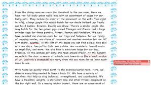 description classroom essay description classroom