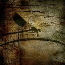 Dragonfly <b>Painting</b>   Collage <b>art</b> mixed media, Insect <b>art</b>, Dragonfly ...