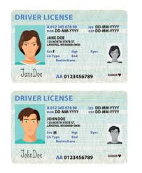 Driver Template Birth Sumo License Templates Templates - Own Your Templates Certificate Driver's Certificate Licence Make