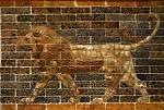 mesopotamia Legacy