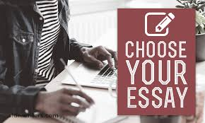 choose product in the best essay writing company