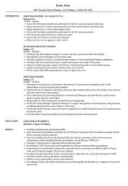Process Expert Resume Samples Velvet Jobs