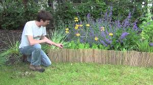 ... Bamboo Lawn Edging Roll - YouTube (exceptional Bamboo Garden Houston #8)