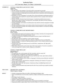 Clinical Nurse Specialist Resume Samples Velvet Jobs