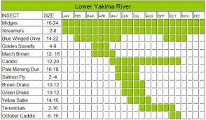 Yakima River Hatch Chart Lower Yakima Hatch Chart