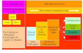 Communicable Diseases Chart With Pictures Lesson 1 Introduction To Communicable Diseases Include