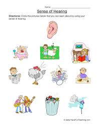 Senses Worksheet - Hearing