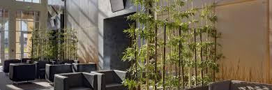 Designs For Health Palm Coast Florida Home