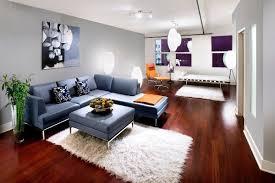 Nice Small Living Room Ideas 2013 Design Ideas