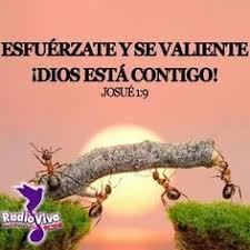 Spanish Christian Quotes Best of Spanish Christian Quotes 24 Images About Bible Quotes I Love