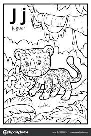 coloring book alphabet letters colorless letter j jaguar stock vector for children by