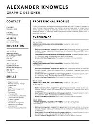 Best Resume Template Microsoft Word Professional Ms