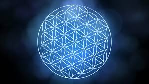 The Flower of Life Forming Stock Footage Video (100% Royalty-free) 25075763  | Shutterstock