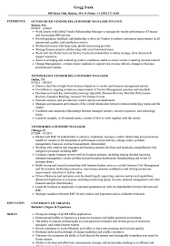 Relationship Manager Job Description Resume Vendor Relationship Manager Resume Samples Velvet Jobs 13