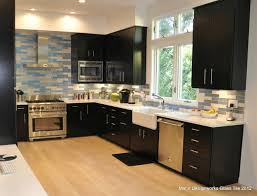 Kitchen Backsplash contemporary-kitchen