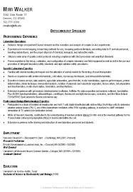 example of a great resume getessaybiz excellent resume objective