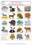 write a paragraph about a wild animal