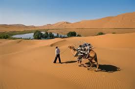 how i paraglided across the gobi dunes