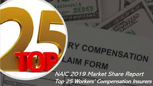One task of the naic is the workers' compensation (c) task force, which studies the effectiveness and nature of. Naic 2019 Market Share Report The Top 25 Workers Compensation Companies In The U S Agency Checklists