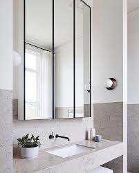 bathroom mirror cabinets you can look small mirrored cabinet slimline bathroom with double15 mirror