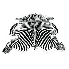 real zebra rug zebra rug zebra print rug area rugs magnificent zebra print rug animal real zebra rug